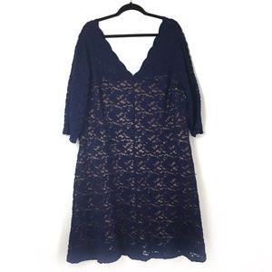 Blue Lace Dress over Nude Plus Size 24